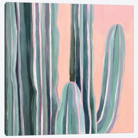 Desert Dawn V Canvas Print #POP1257} by Grace Popp Canvas Print