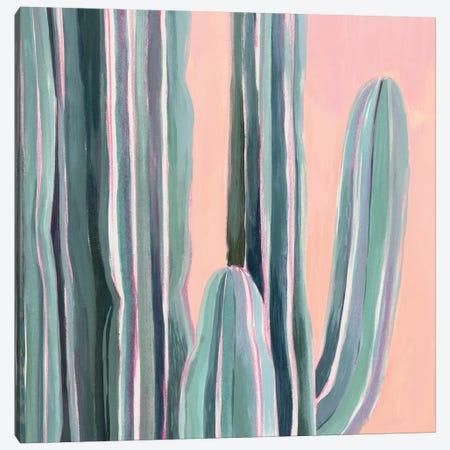 Desert Dawn V Canvas Print #POP1257} by Grace Popp Canvas Print