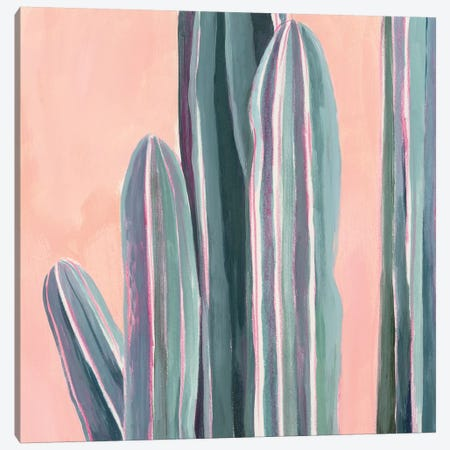 Desert Dawn VI Canvas Print #POP1258} by Grace Popp Canvas Wall Art