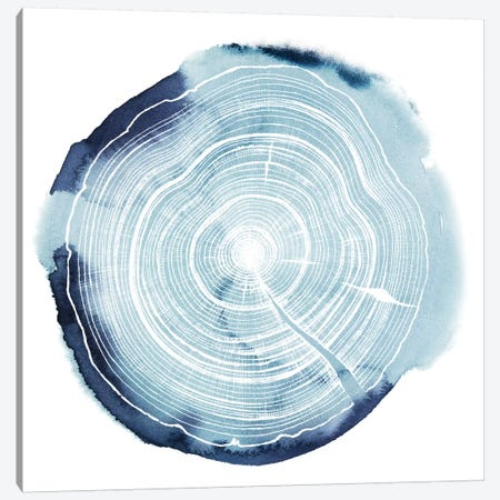 Tree Ring Overlay III Canvas Print #POP125} by Grace Popp Canvas Wall Art