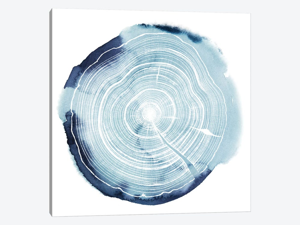 Tree Ring Overlay III by Grace Popp 1-piece Canvas Artwork