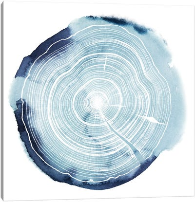Tree Ring Overlay III Canvas Art Print