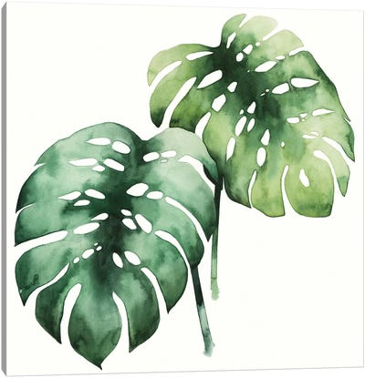 Tropical Plant I Canvas Art Print