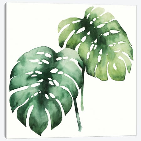 Tropical Plant I Canvas Print #POP129} by Grace Popp Art Print