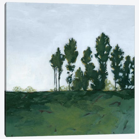 Northern Coppice II Canvas Print #POP1330} by Grace Popp Canvas Print