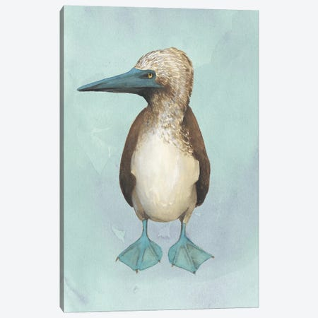 Watercolor Beach Bird I Canvas Print #POP1350} by Grace Popp Canvas Art Print