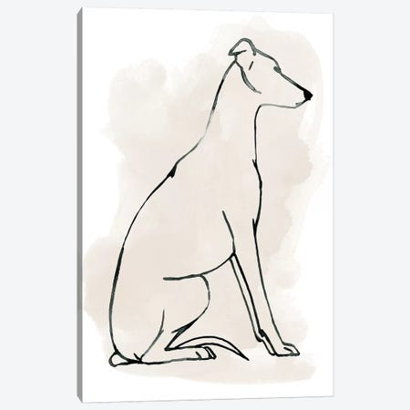 Greyhound Sketch I Canvas Print #POP1370} by Grace Popp Canvas Art Print