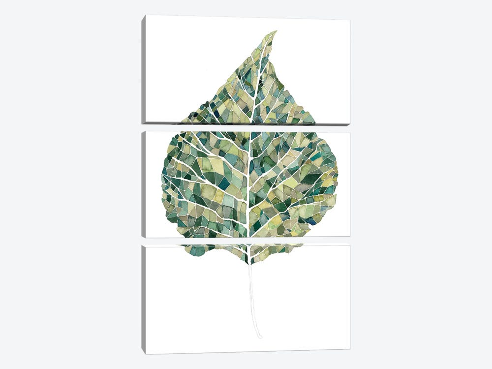 Verdant Details I by Grace Popp 3-piece Canvas Print