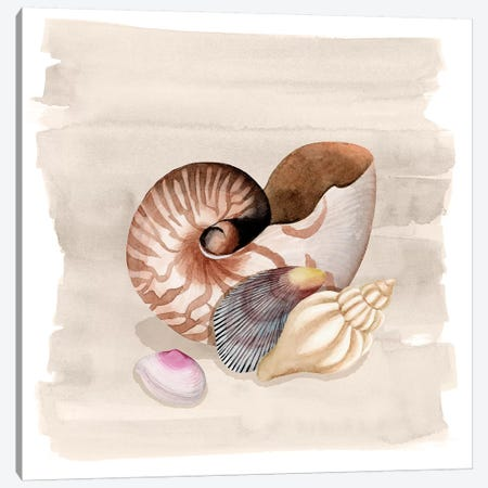 Ocean Keepsake I Canvas Print #POP1424} by Grace Popp Canvas Artwork