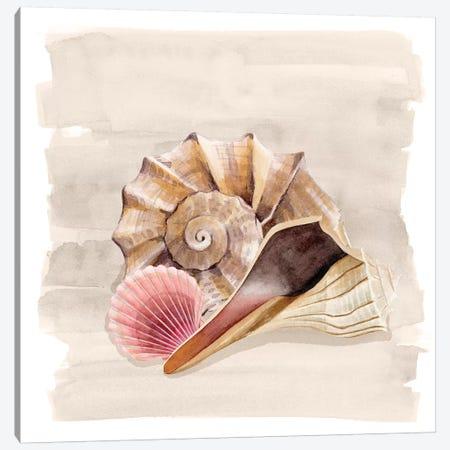 Ocean Keepsake II Canvas Print #POP1425} by Grace Popp Canvas Wall Art