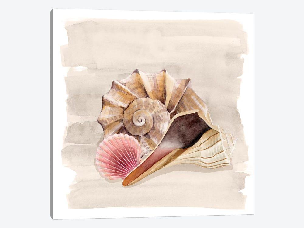 Ocean Keepsake II by Grace Popp 1-piece Art Print