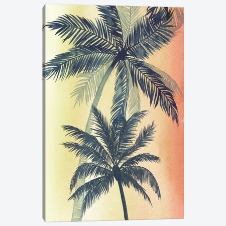 Vintage Palms II Canvas Print #POP142} by Grace Popp Canvas Print