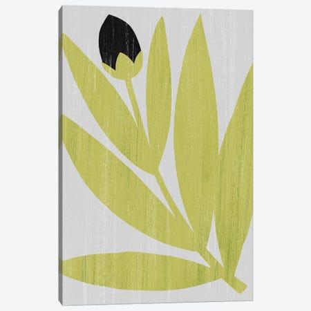 Flower Cutting I Canvas Print #POP1434} by Grace Popp Canvas Art Print