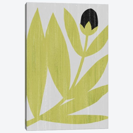 Flower Cutting II Canvas Print #POP1435} by Grace Popp Canvas Print