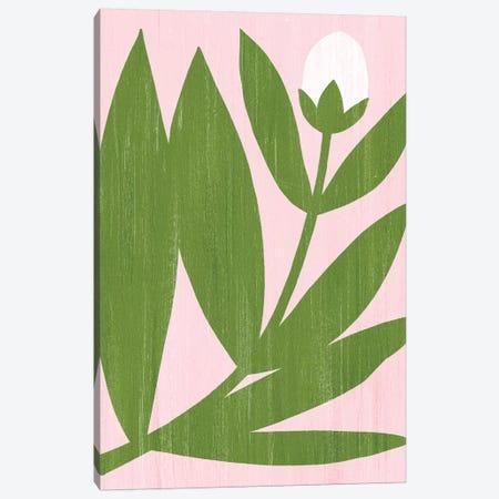 Flower Cutting III Canvas Print #POP1436} by Grace Popp Art Print