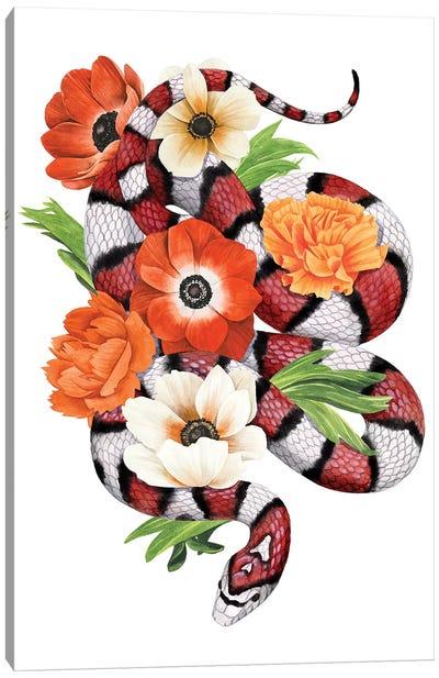 King Snake II Canvas Art Print