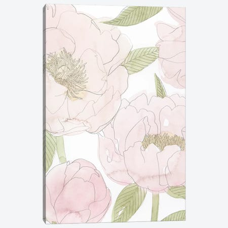 Veiled Peonies I Canvas Print #POP1444} by Grace Popp Canvas Art