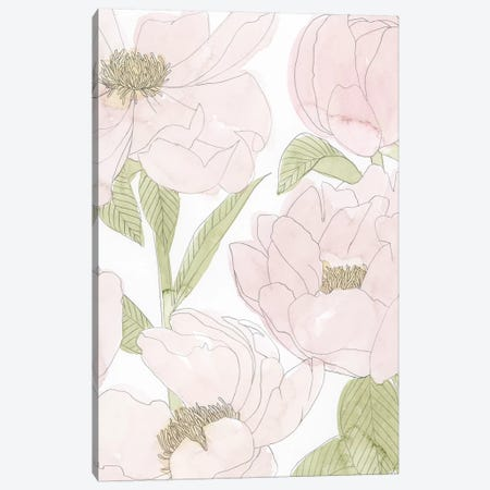 Veiled Peonies II Canvas Print #POP1445} by Grace Popp Canvas Wall Art