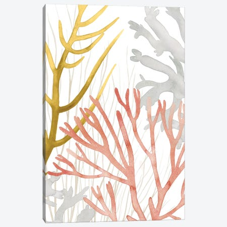 Desert Coral II Canvas Print #POP1493} by Grace Popp Canvas Wall Art