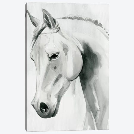 Horse Whisper I Canvas Print #POP1502} by Grace Popp Canvas Art