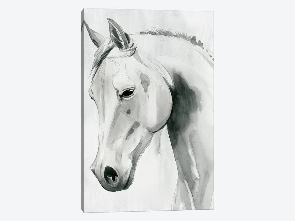 Horse Whisper I by Grace Popp 1-piece Canvas Art Print