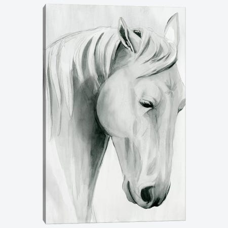 Horse Whisper II Canvas Print #POP1503} by Grace Popp Canvas Art
