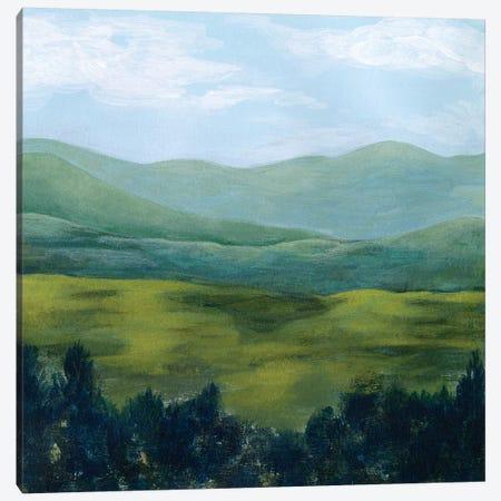Open Valley I Canvas Print #POP1518} by Grace Popp Canvas Art Print