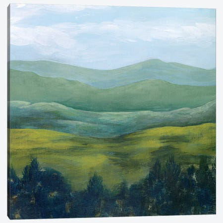 Open Valley II Canvas Print #POP1519} by Grace Popp Canvas Art Print