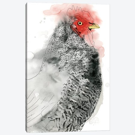 Plymouth Rooster II Canvas Print #POP1523} by Grace Popp Canvas Artwork