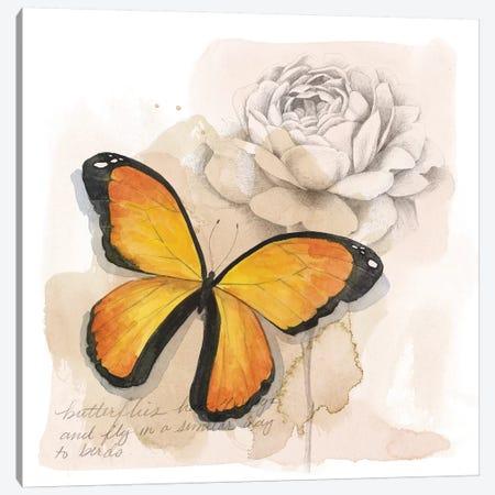Shadow Box Butterfly IV Canvas Print #POP1529} by Grace Popp Canvas Wall Art