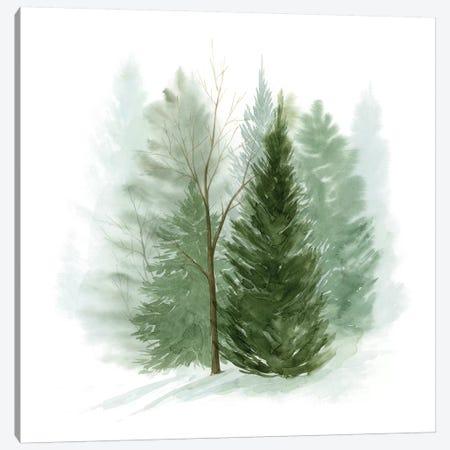 Walk in the Woods I Canvas Print #POP1553} by Grace Popp Canvas Art Print