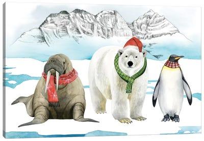 Arctic Animal Collection A Canvas Art Print
