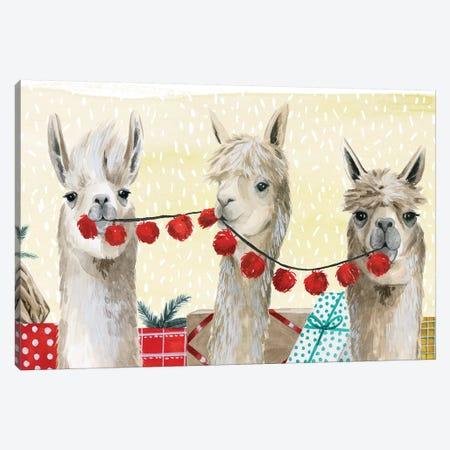 Boho Christmas Collection D Canvas Print #POP1607} by Grace Popp Canvas Artwork