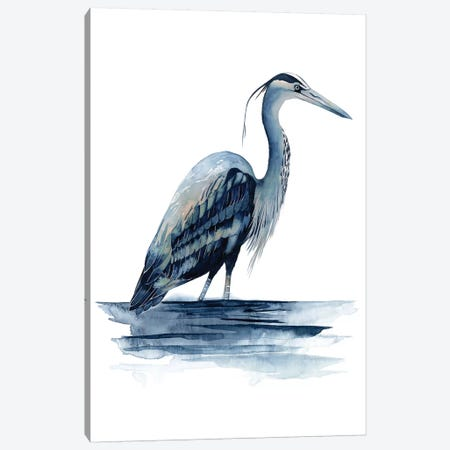 Azure Heron II Canvas Print #POP160} by Grace Popp Canvas Print