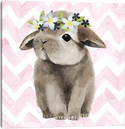 Easter Babies Collection E Canvas Art Print