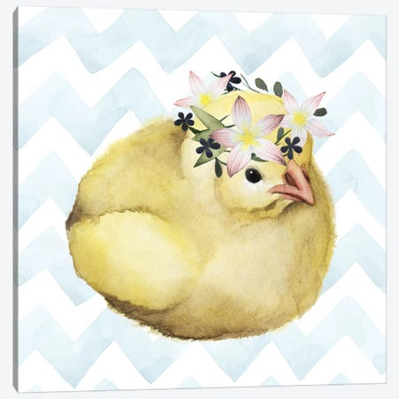 Easter Babies Collection H Canvas Print #POP1694} by Grace Popp Art Print