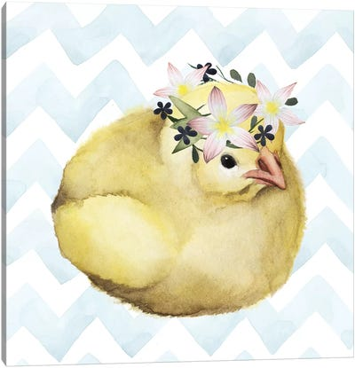 Easter Babies Collection H Canvas Art Print