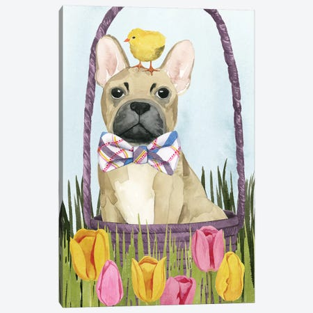 Puppy Easter Collection B Canvas Print #POP1771} by Grace Popp Art Print