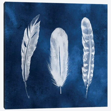 Cyanotype Feathers I Canvas Print #POP179} by Grace Popp Canvas Wall Art