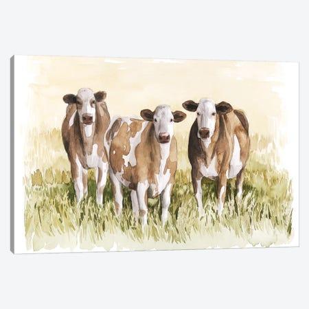 Golden Graze I Canvas Print #POP1890} by Grace Popp Canvas Artwork