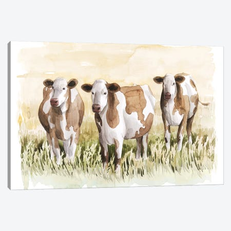 Golden Graze II Canvas Print #POP1891} by Grace Popp Canvas Artwork