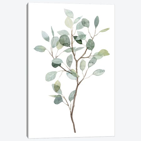 Seaglass Eucalyptus I Canvas Print #POP1935} by Grace Popp Canvas Art