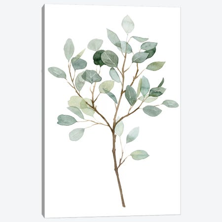 Seaglass Eucalyptus II Canvas Print #POP1936} by Grace Popp Canvas Wall Art