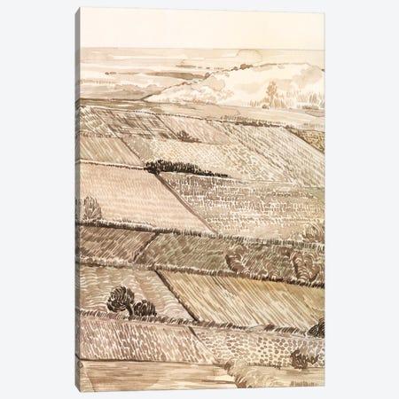 Arable Land III Canvas Print #POP1966} by Grace Popp Canvas Art Print