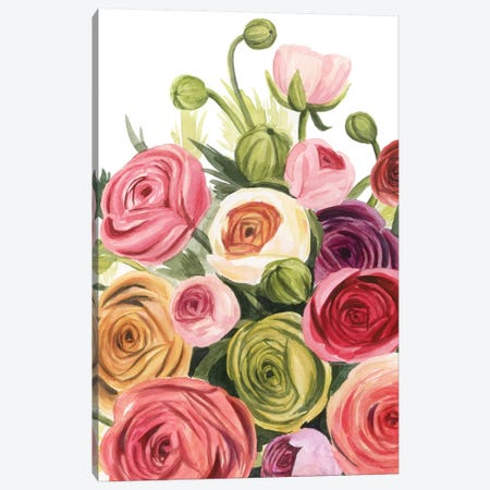 Ranunculus Study I Canvas Print #POP2029} by Grace Popp Canvas Art Print