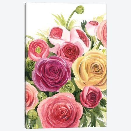 Ranunculus Study II Canvas Print #POP2030} by Grace Popp Canvas Wall Art