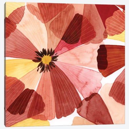 Elementary Flora I Canvas Print #POP2080} by Grace Popp Canvas Print