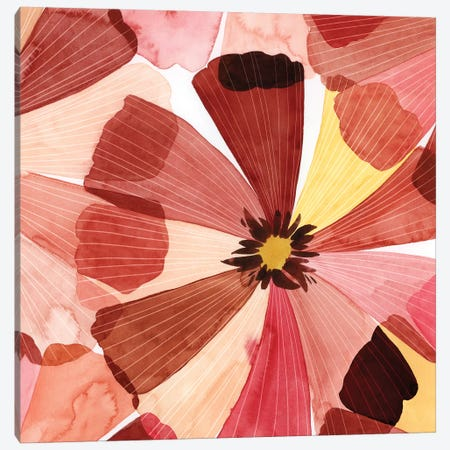 Elementary Flora II Canvas Print #POP2081} by Grace Popp Canvas Print