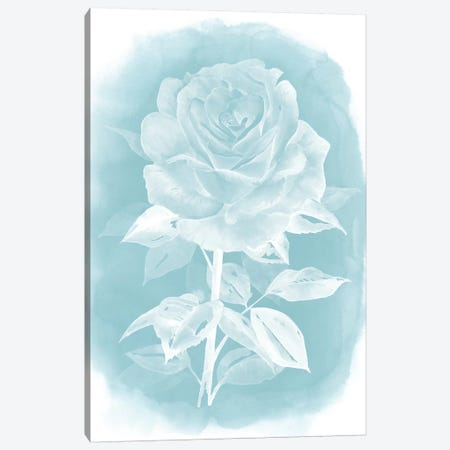 Ghost Rose I Canvas Print #POP209} by Grace Popp Canvas Wall Art