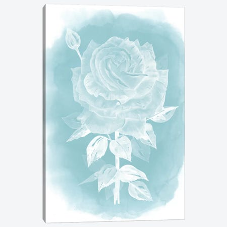 Ghost Rose II Canvas Print #POP210} by Grace Popp Canvas Art Print